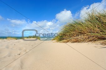 Dunes by the sea