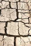 Dry Land with Cracked