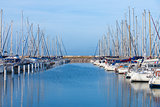 Yachts moored in a marina