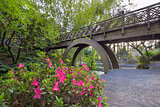 Wooden Bridge at Crystal Springs Rhododendron Garden