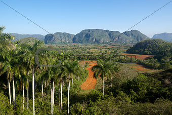 View of hills and mountains in Vinales, Cuba