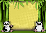 two panda