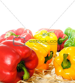 Bell Pepper close up