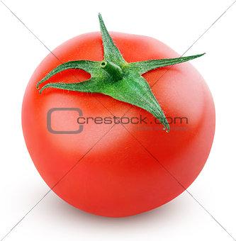 Single fresh red tomato on white