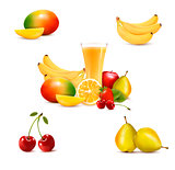 Group of summer and tropical fruit. Vector.