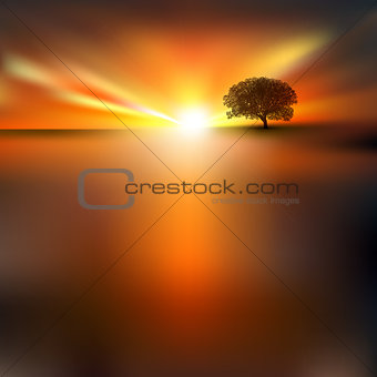 abstract background with tree and sunrise
