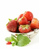 ripe organic strawberries with green leaf