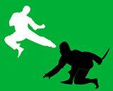 ninjas and karate