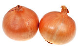 two onion bulbs