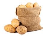 Sack of ripe potatoes