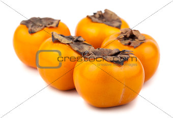 Five ripe persimmon fruits