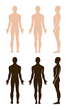 Naked standing man silhouettes (front, side, back)
