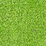 Seamless square texture - green moss