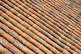 Portuguese Roof Tiles