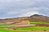 Field in Spain