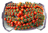Cherry tomatoes on twigs, stacked in a box.