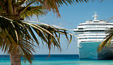 white luxury cruise ship and palm tree
