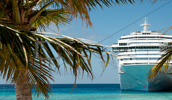 white luxury cruise ship and palm tree