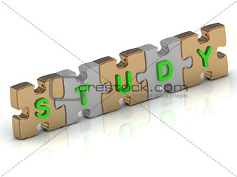 STUDY word of gold puzzle