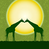 Vector card with two giraffes