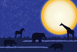 Card with african animals at night