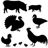 Farm animals vector silhouettes
