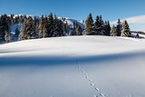 Almost Untouched Powder Snow Landscape, Ski Resort Megeve, Frenc