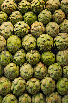 Artichokes to sell