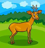 wild deer cartoon illustration