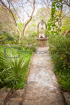 Beautiful Lush Park Walkway and Antique Well