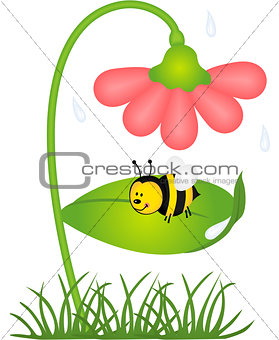 Bee is sheltered from rain under a flower