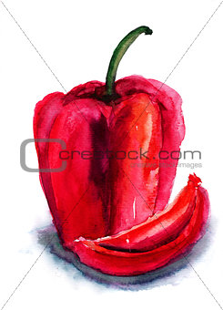 Watercolor illustration of red pepper