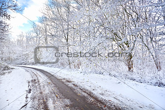 road in snowy winter