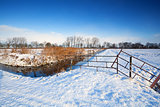 snow on Dutch pastures