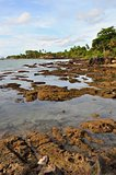 Scenic view of beach with rocks at Anyer