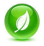 Leaf icon glassy green button