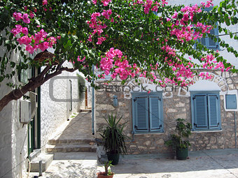 Blue doors, window shutters and flowers, Hydra island