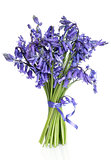 Bluebell Flower Posy