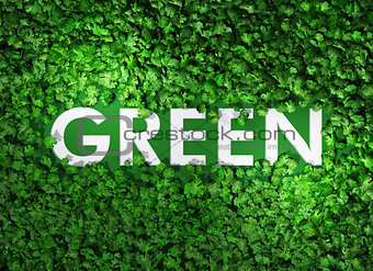 green word among the grass