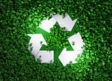 recycle symbol among the grass