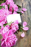 Pink peonies and card.