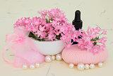 Verbena Aromatherapy