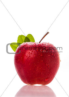 fresh apple with water droplets and grren leaves in background