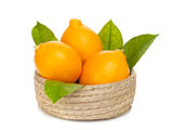 Orange lemons with leafs