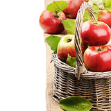 Fresh organic apples in wicker basket