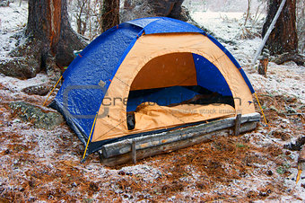 Tent in snow wood