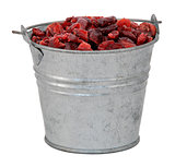 Dried cranberries in a miniature metal bucket