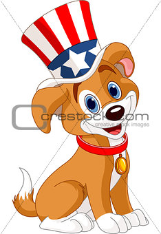 Fourth of July puppy