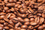 close-up of coffee beans