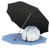 Umbrella covers the brain